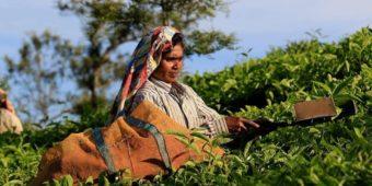 femme inde du sud