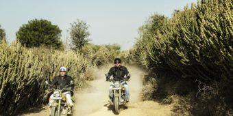 road trip inde rajasthan