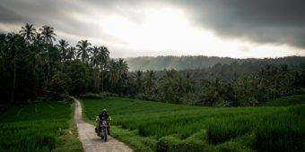 voyage moto indonesie riziere