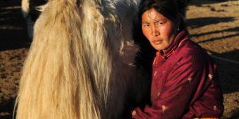 visite mongolie