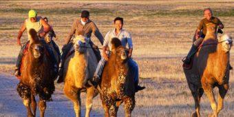 balade mongolie