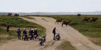la mongolie en moto