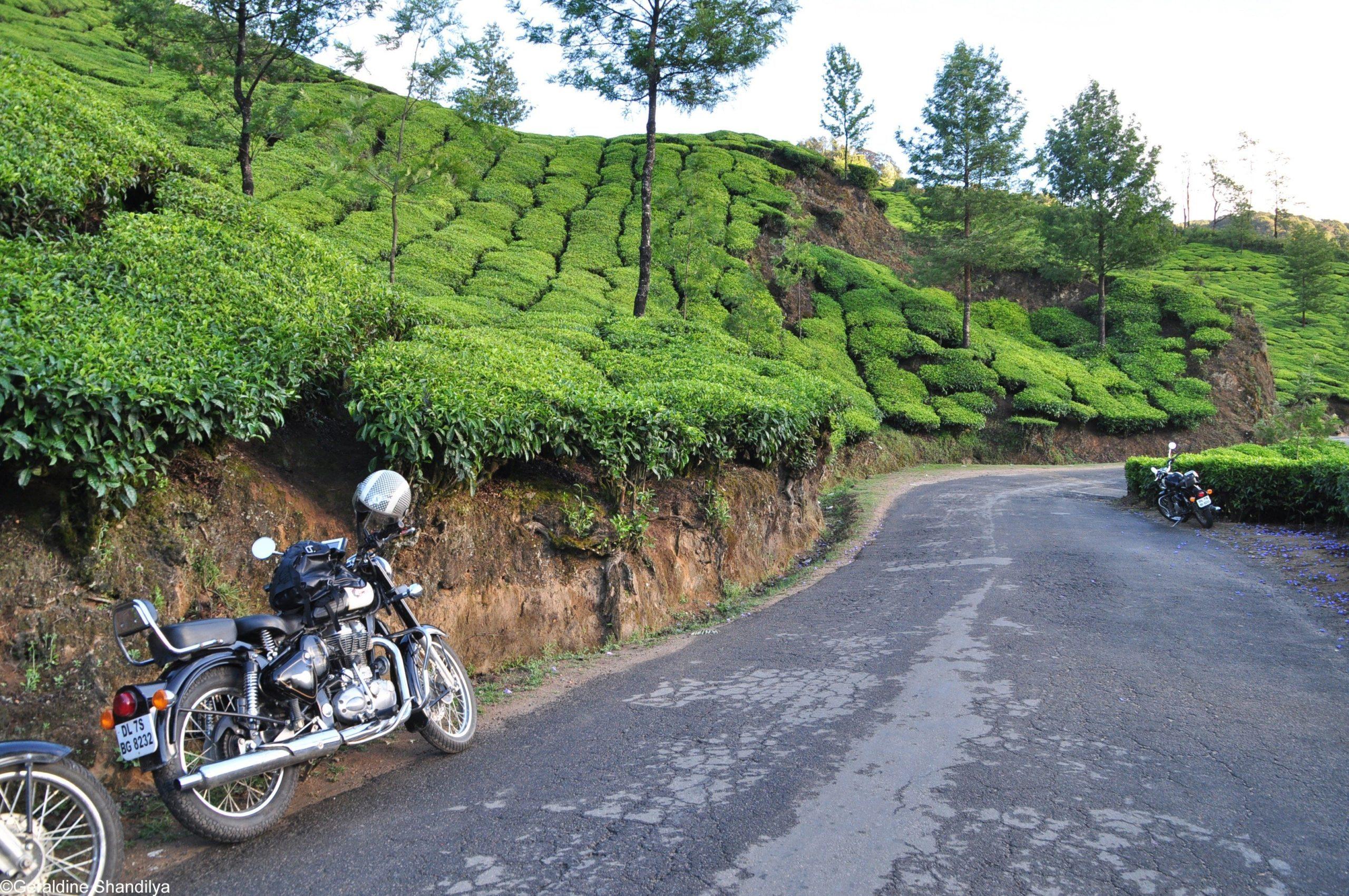 Motorrad-Roadtrip Südindien - Die Gewürzstraße