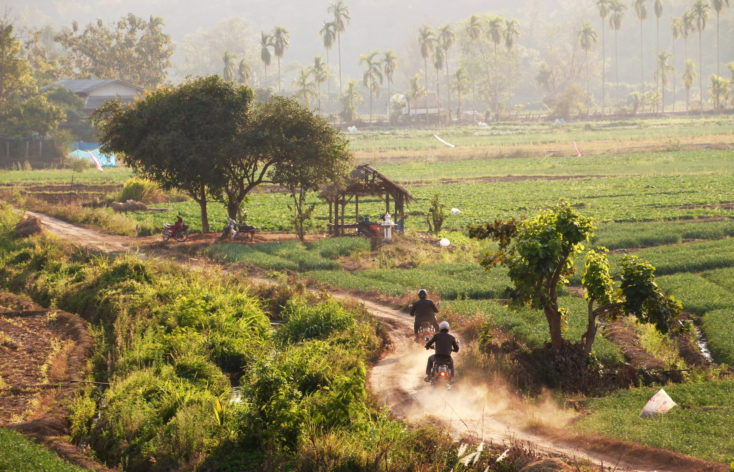 Motorrad-Roadtrip Thailand & Laos - Im hintersten Winkel des Königreichs Siam
