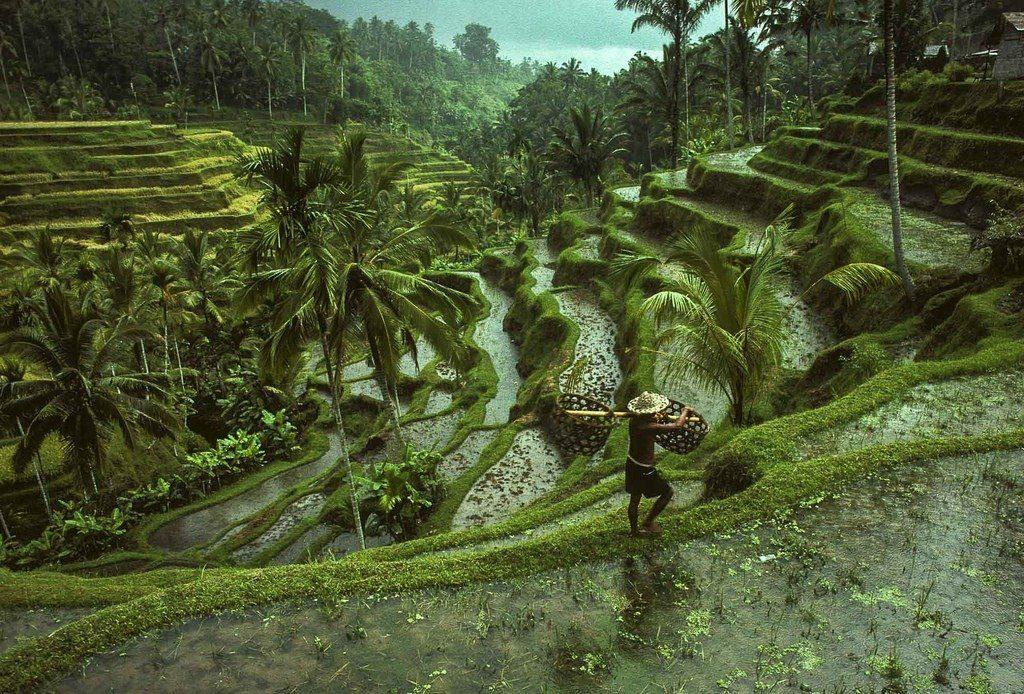 Motorradreise Indonesien